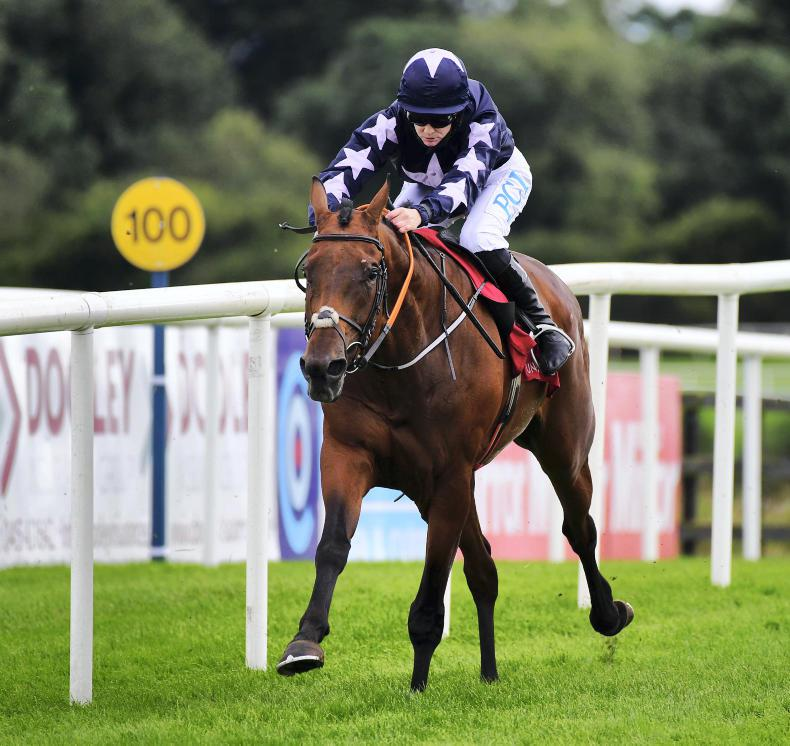 PUNCHESTOWN TUESDAY: Commandingpresence impressive