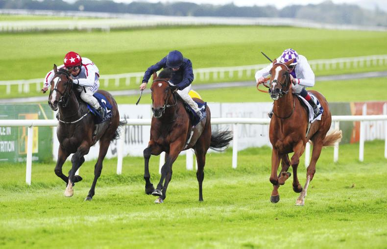 LEOPARDSTOWN SATURDAY: Cadillac can rev it back up at Leopardstown