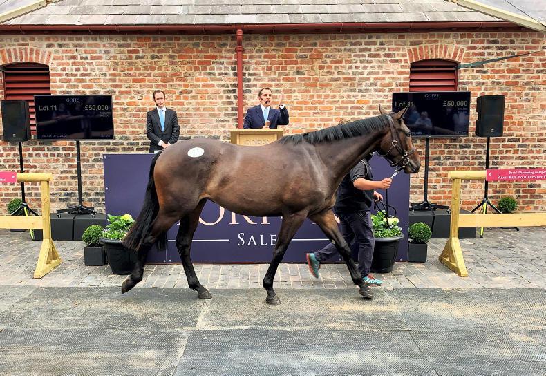 GOFFS UK YORTON SALE: Solid trade at Yorton's home sale