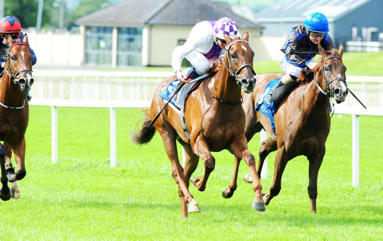 MOYGLARE STUD STAKES: Take Teresa to be queen of the Moyglare