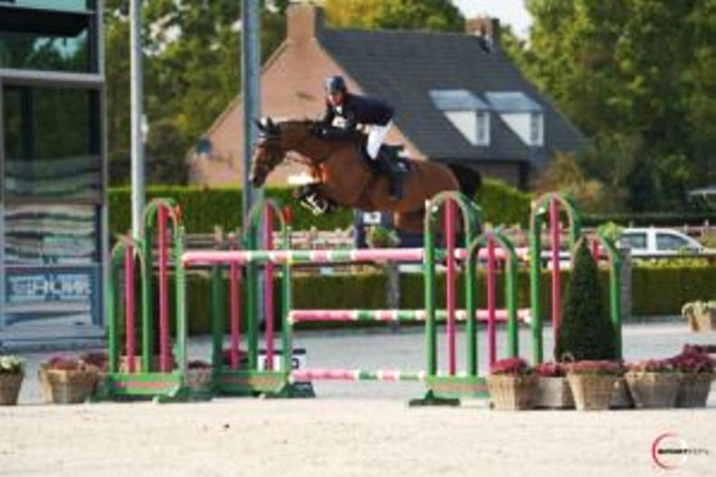 SHOW JUMPING: Masterly Dutch win by Kenny