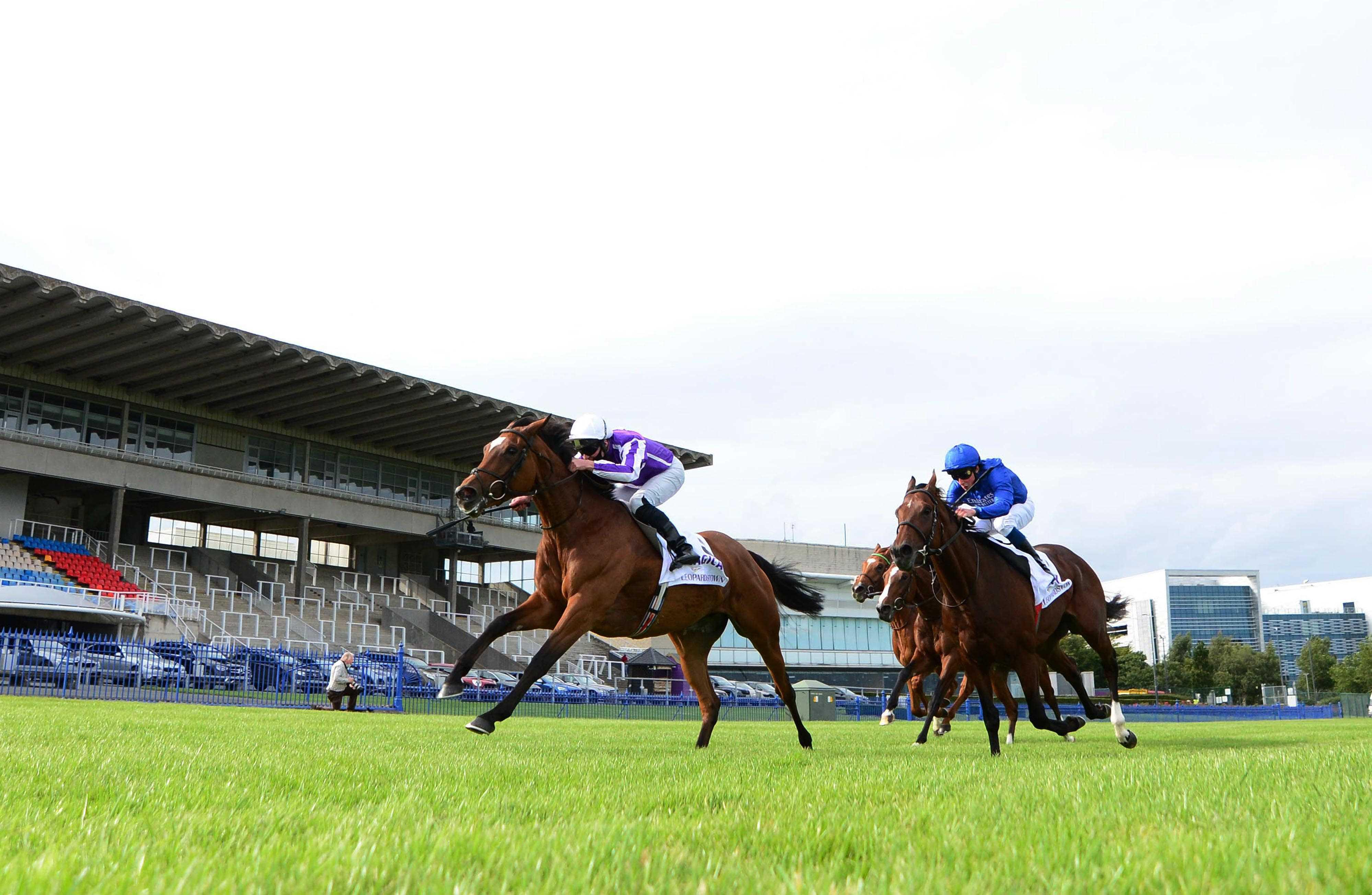 TIME WILL TELL: Head-to-head battle allows Magical to produce her very best