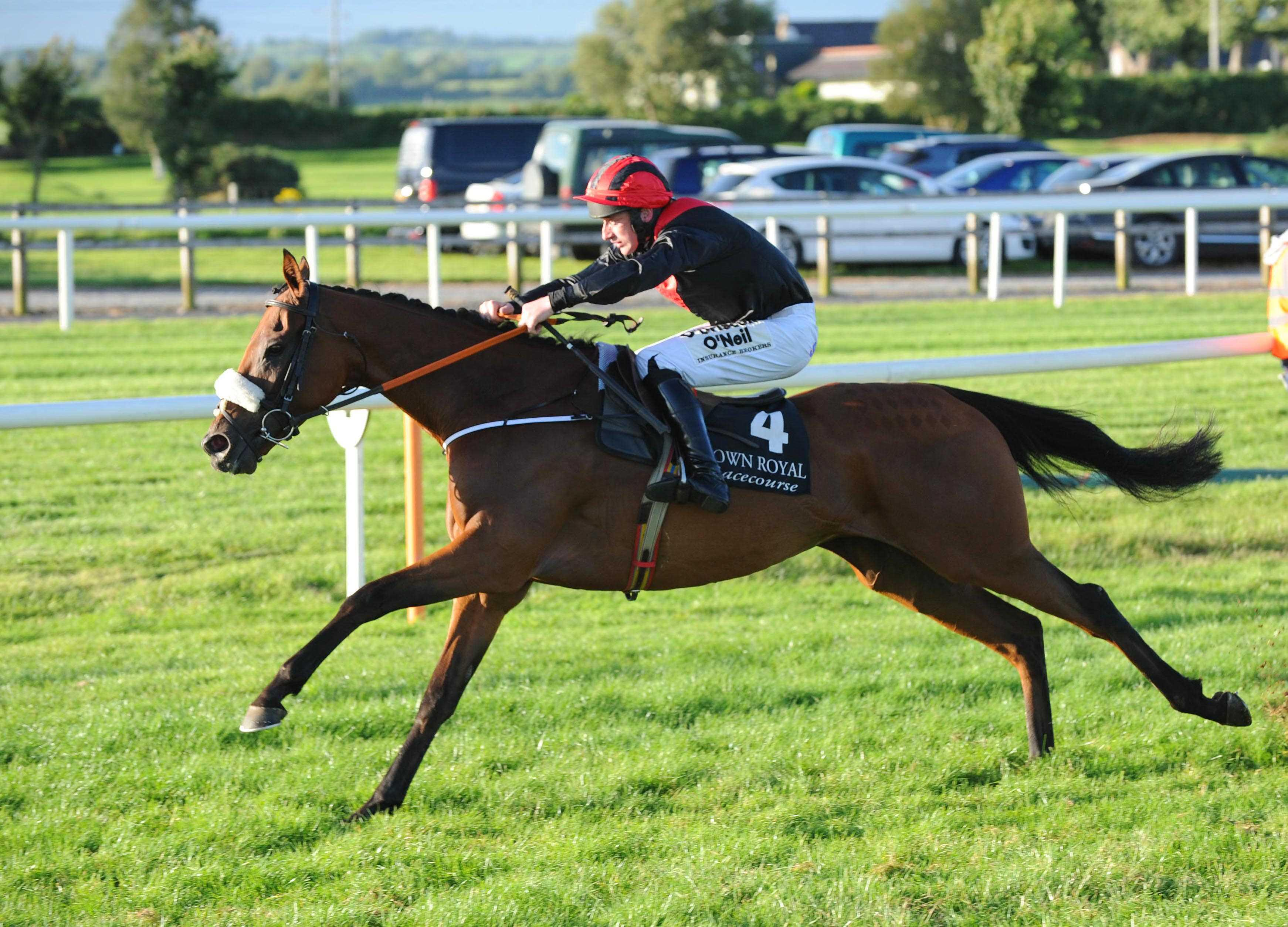 TALKING TRAINER: Marking your card for Listowel