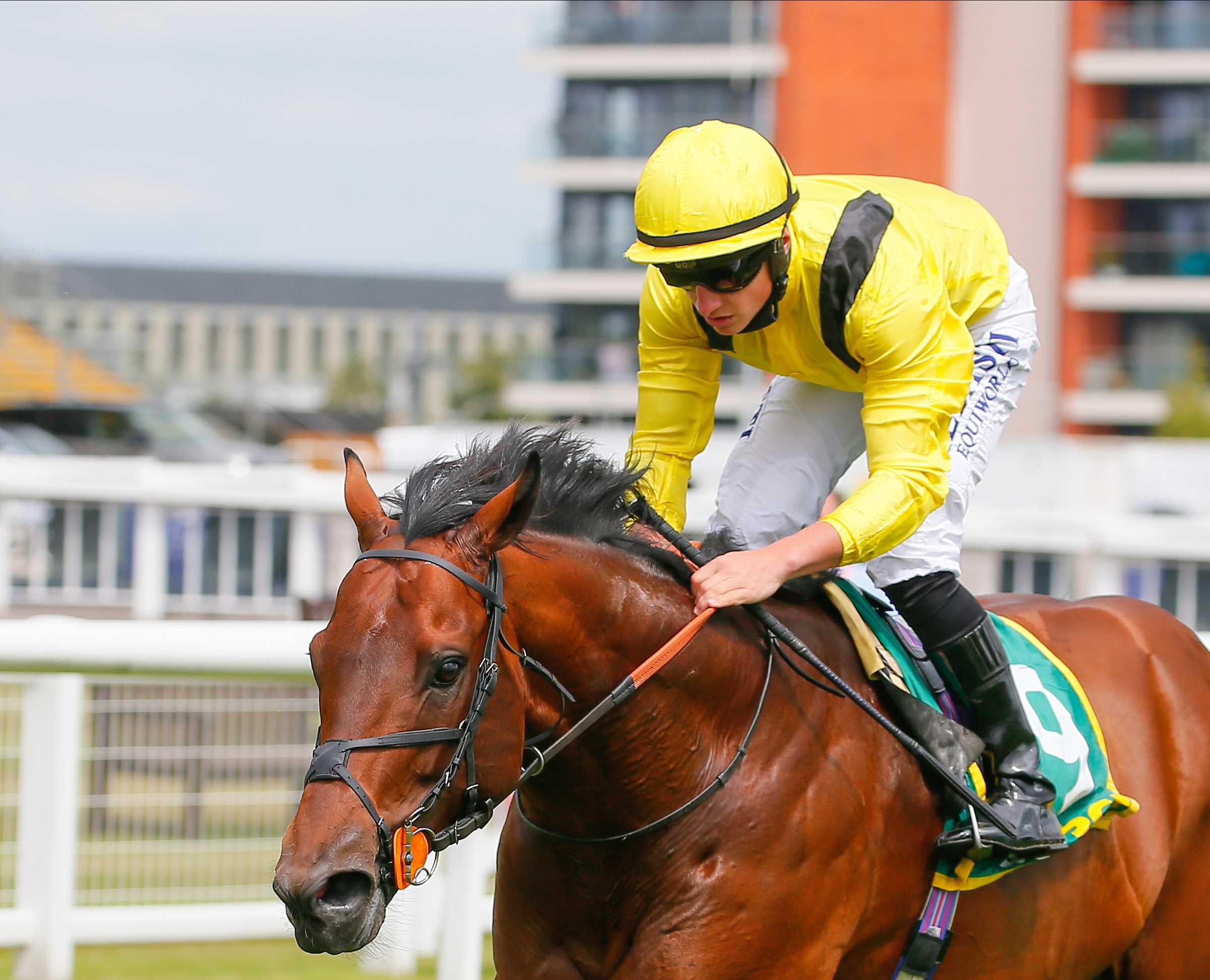 DONN MCCLEAN: Nahaarr should get the fast pace he needs