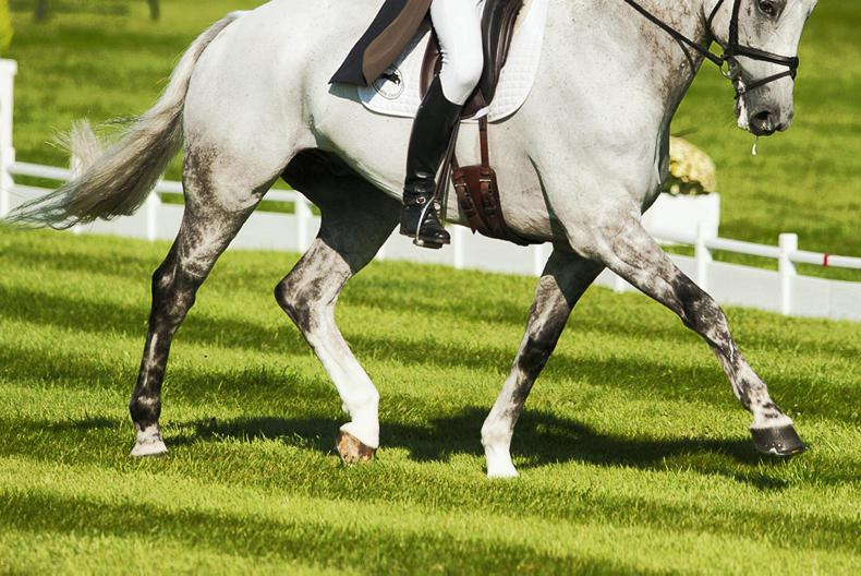EVENTING: Steele gets off the mark with a double