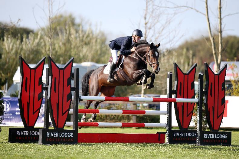 SHOW JUMPING: Carey tops competitive young horse finals