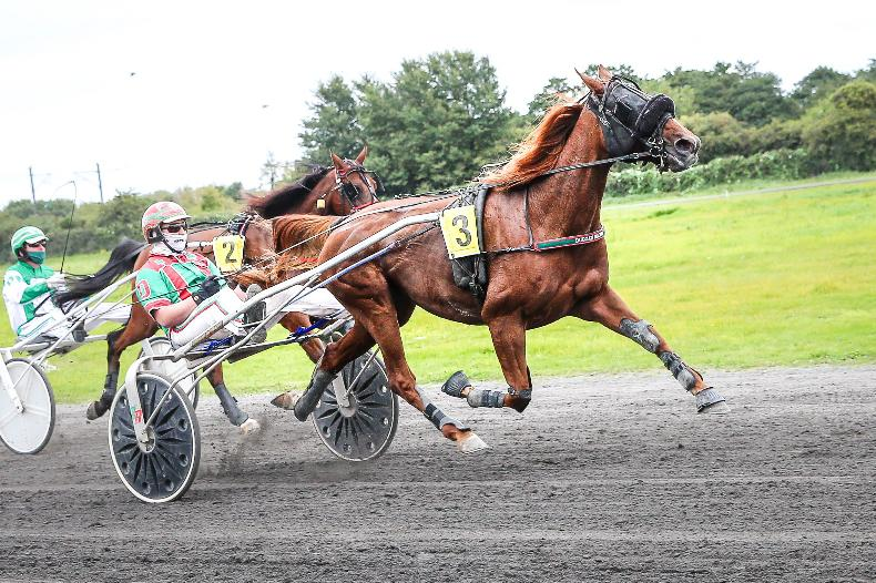 HARNESS RACING: Duggans deliver terrific three-timer