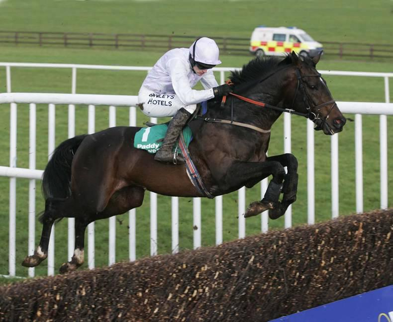 PEDIGREE ANALYSIS: Gwencily another fine advertisement for the late Nickname