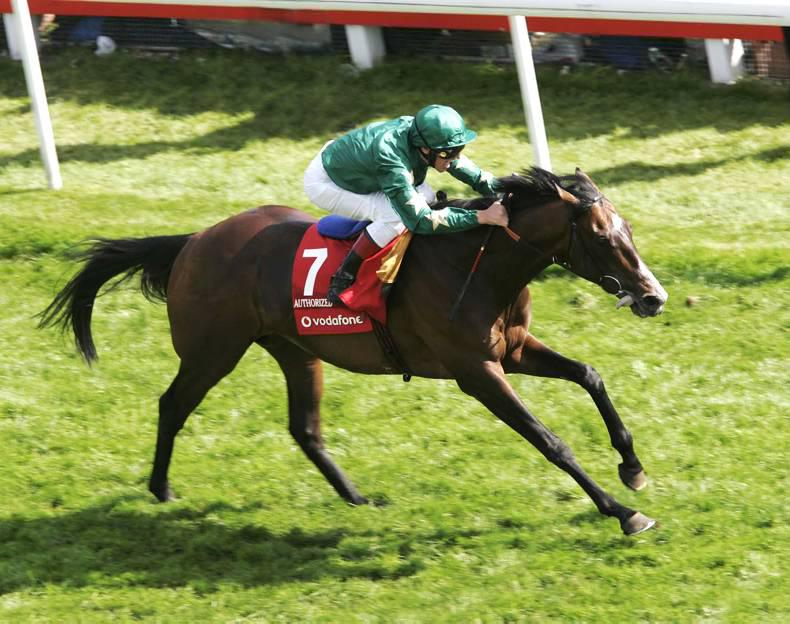 PEDIGREE ANALYSIS: Authorized son Beltor shows Grade 1 potential