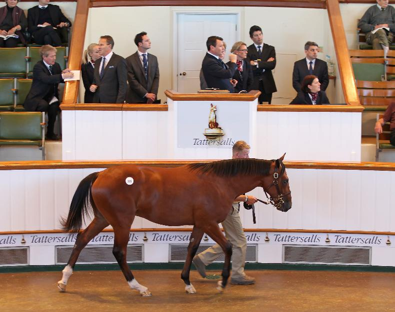 SALES: Fortnight filled with stars at the October Sale