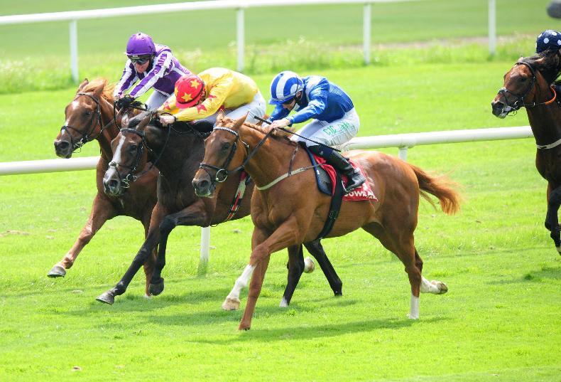 CURRAGH SATURDAY PREVIEW: Take Wuqood to break O'Brien's Beresford streak