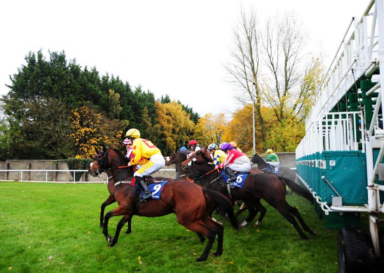 NEWS: Racing and bloodstock stories from the September 26th edition