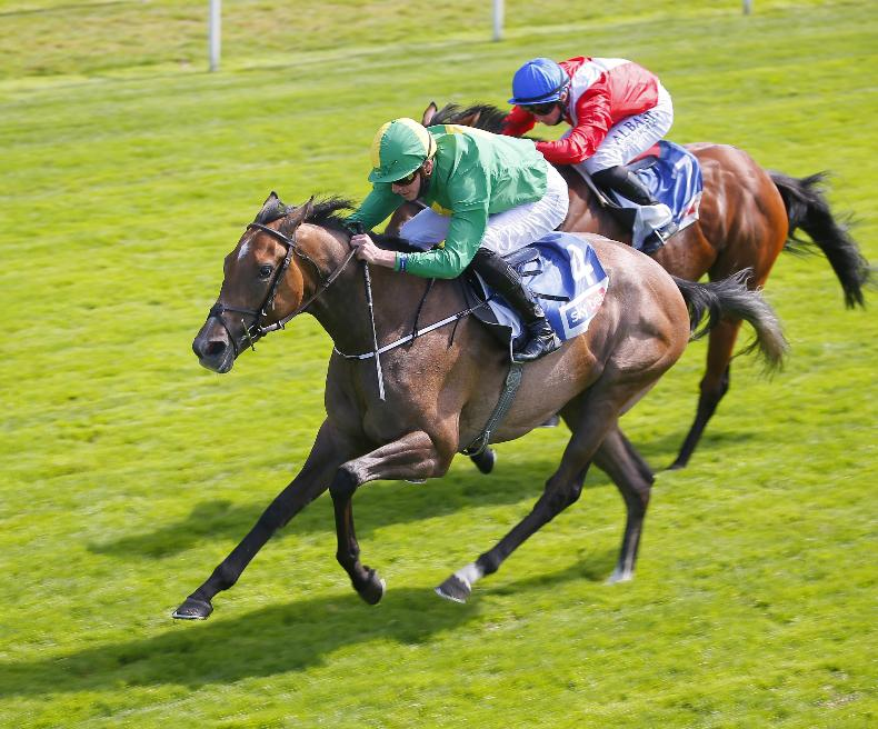RACING CENTRAL: Amulet out to complete remarkable ascent