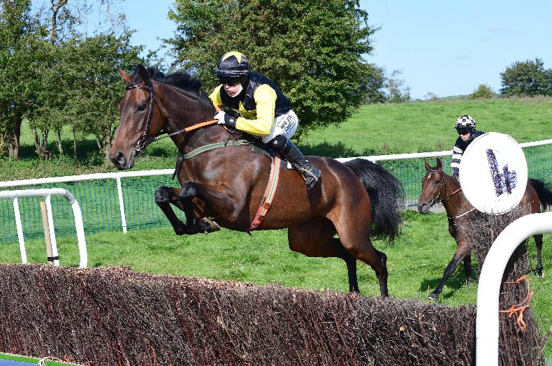 POINT-TO-POINT: A selection of photos from the weekend