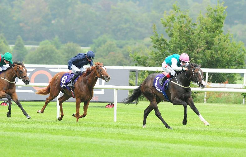 PREVIEW: Ryan McElligott's tips for the Curragh on Sunday