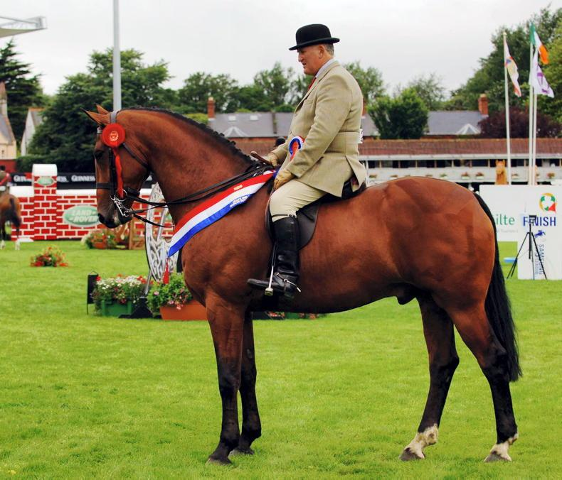 APPRECIATION: Jim McLoughlin - a great supporter of equestrianism
