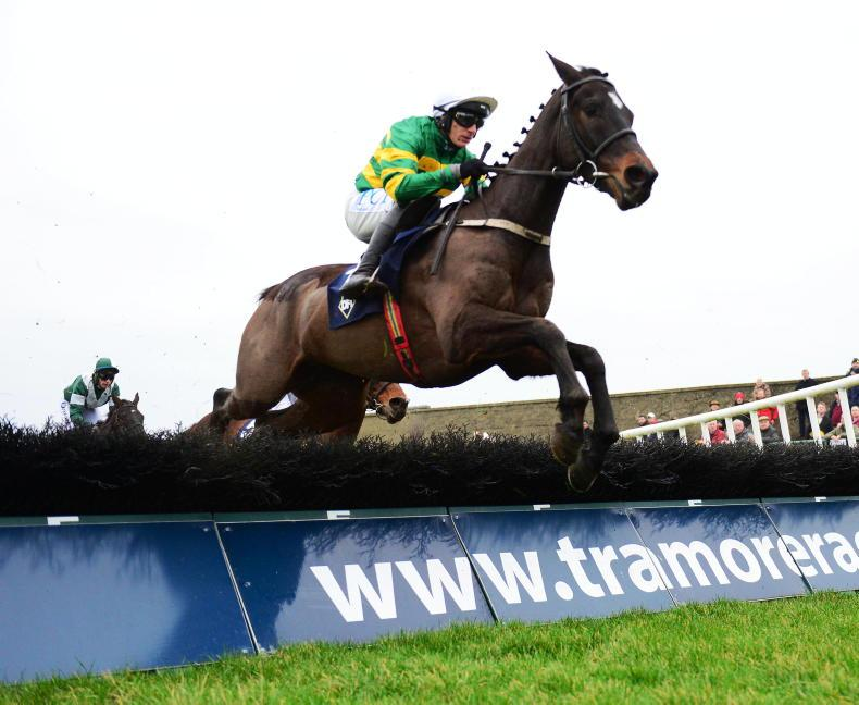 TIPPERARY SUNDAY: Saint Roi set to show his potential