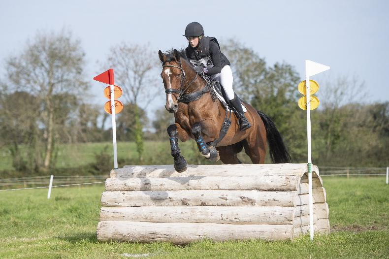 BALLINDENISK INTERNATIONAL: Win adds up for Dinnis and Ardeo