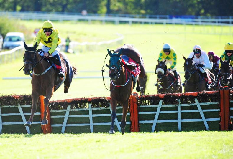 GOWRAN PARK FRIDAY: Buttercup blooms again in Pat Walsh