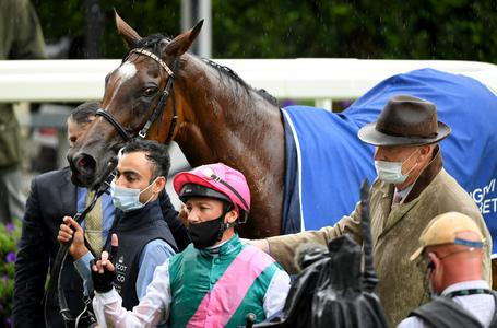 'No immediate decision' on Enable future
