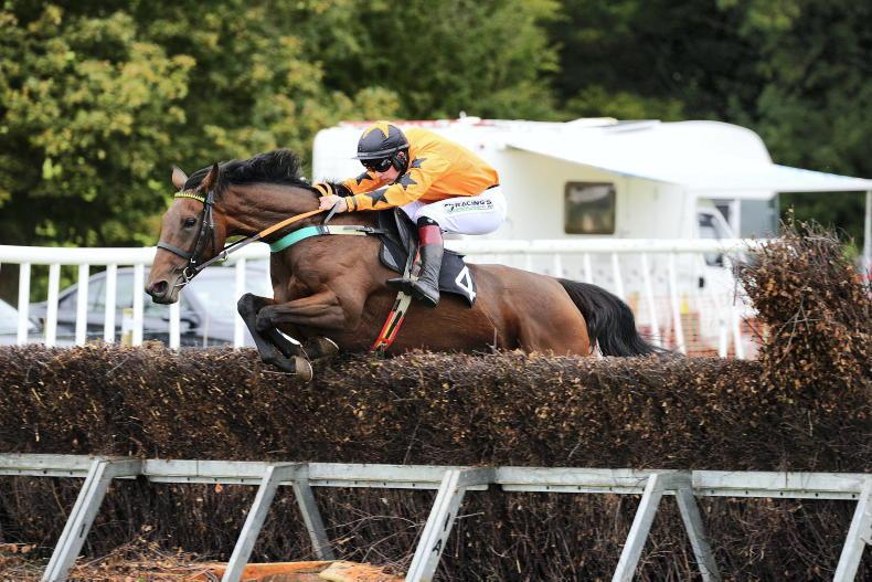 TOOMEBRIDGE SUNDAY: Bowe gets lucky in early double