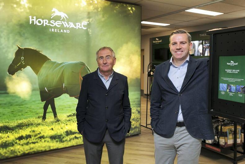 INTERNATIONAL: Irish endurance riders impress at Dutch event