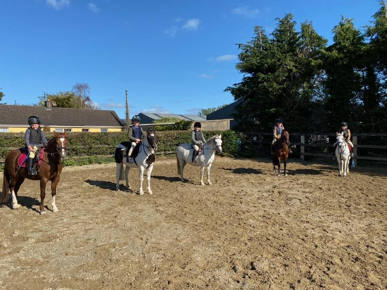 PONY TALES: Top marks for pony clubbers!