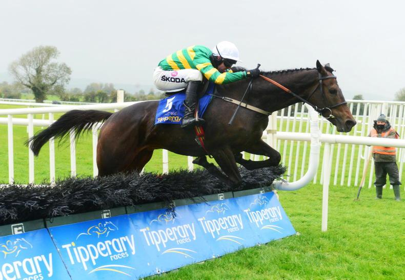 TIPPERARY SUNDAY: Saint Roi the star of the show