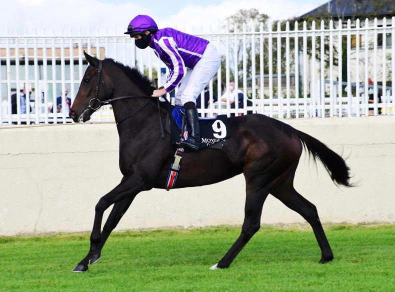 Shale bidding for more Group One glory