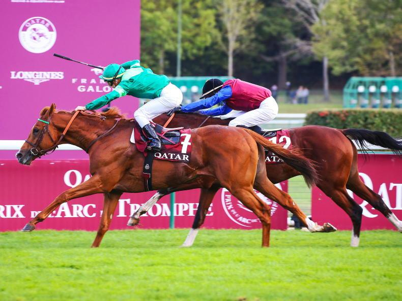 BREEDING INSIGHTS: An unforgettable Arc and winner