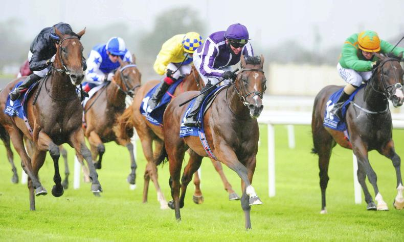 RORY DELARGY: Stamina test will suit this 16/1 chance in Dewhurst