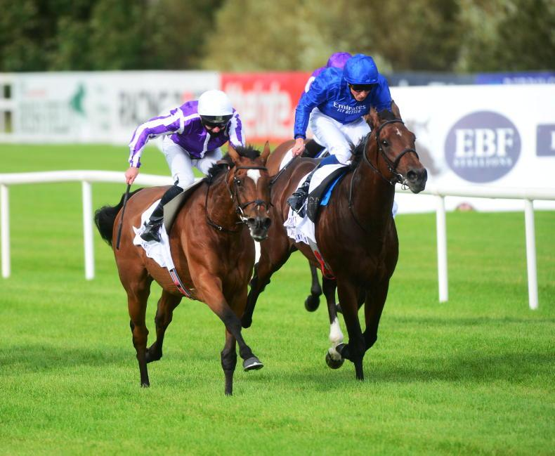 Magical and Mishriff head 16 contenders in Champion Stakes mix