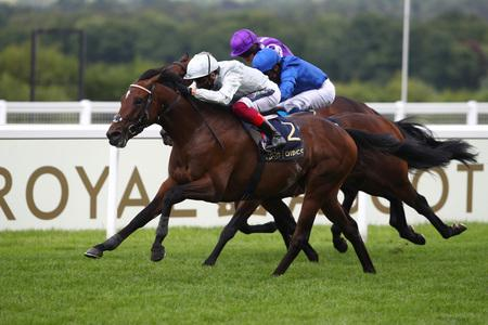 Unbeaten Palace Pier on track for QEII mission