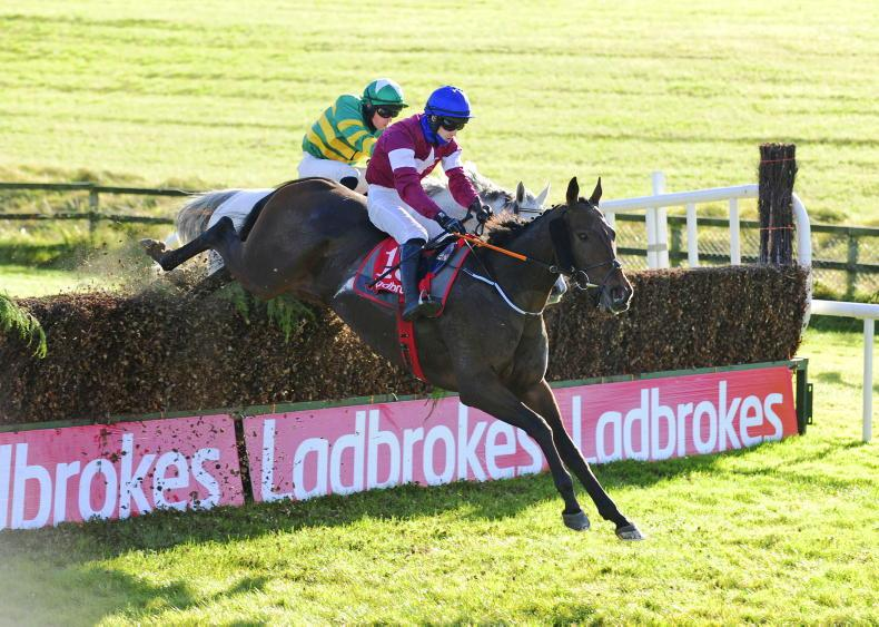 LIMERICK SUNDAY: Aforementioned thrives under bottom weight