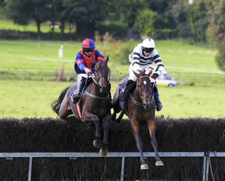 SALES: Flat and jumps prospects in busy Doncaster session