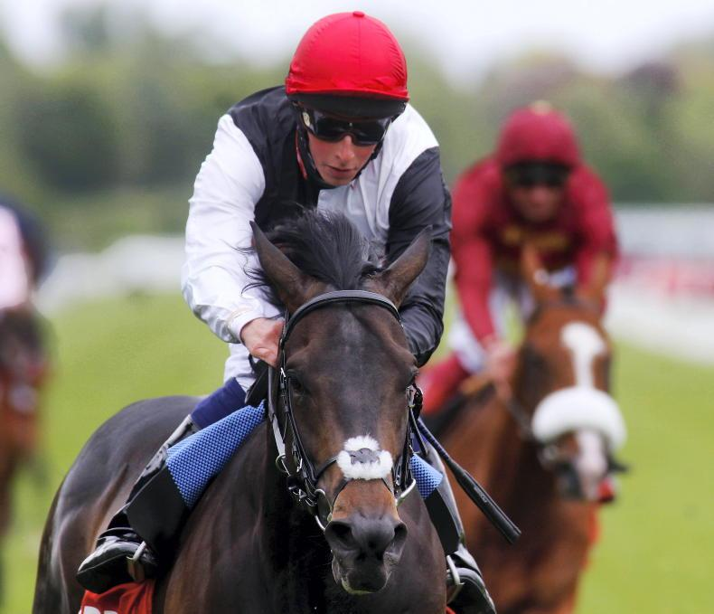 THE WEEK THAT WAS: Forget the Dewhurst – keep watching
