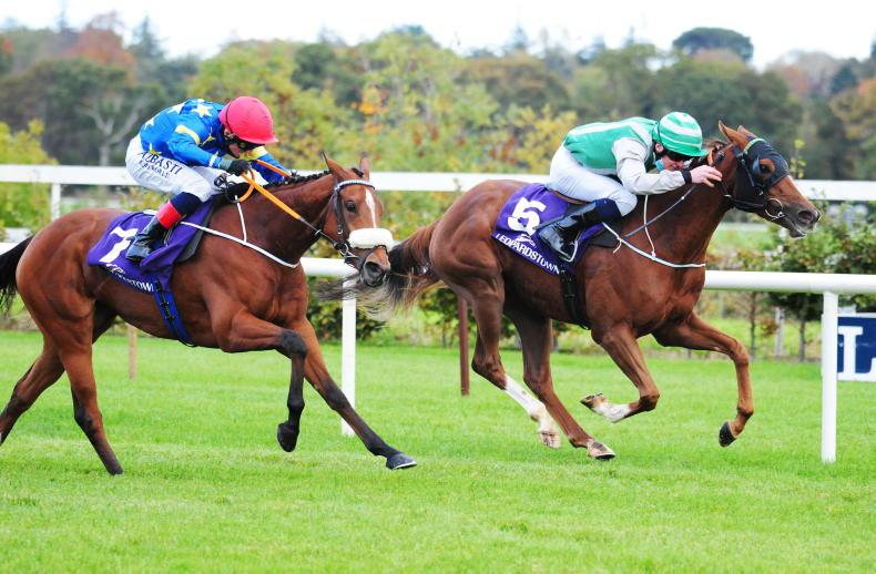 LEOPARDSTOWN FRIDAY: Ballet and Willow continue late season momentum for O'Brien