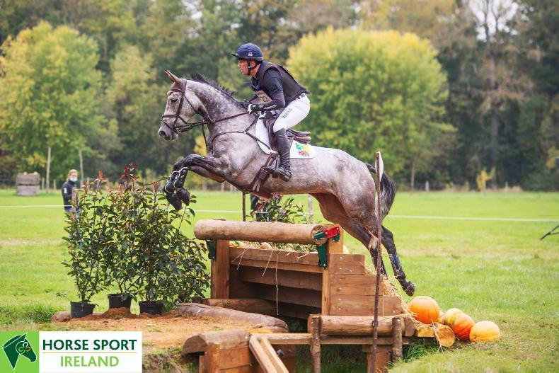 Cooley Rosalent (ISH) wins silver medal at Le Lion d'Angers