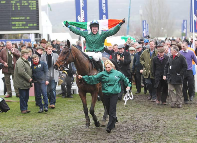 CHELTENHAM: Entries for Bumper and Foxhunter revealed
