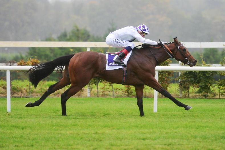 LEOPARDSTOWN SATURDAY: Poetic shows better Flare