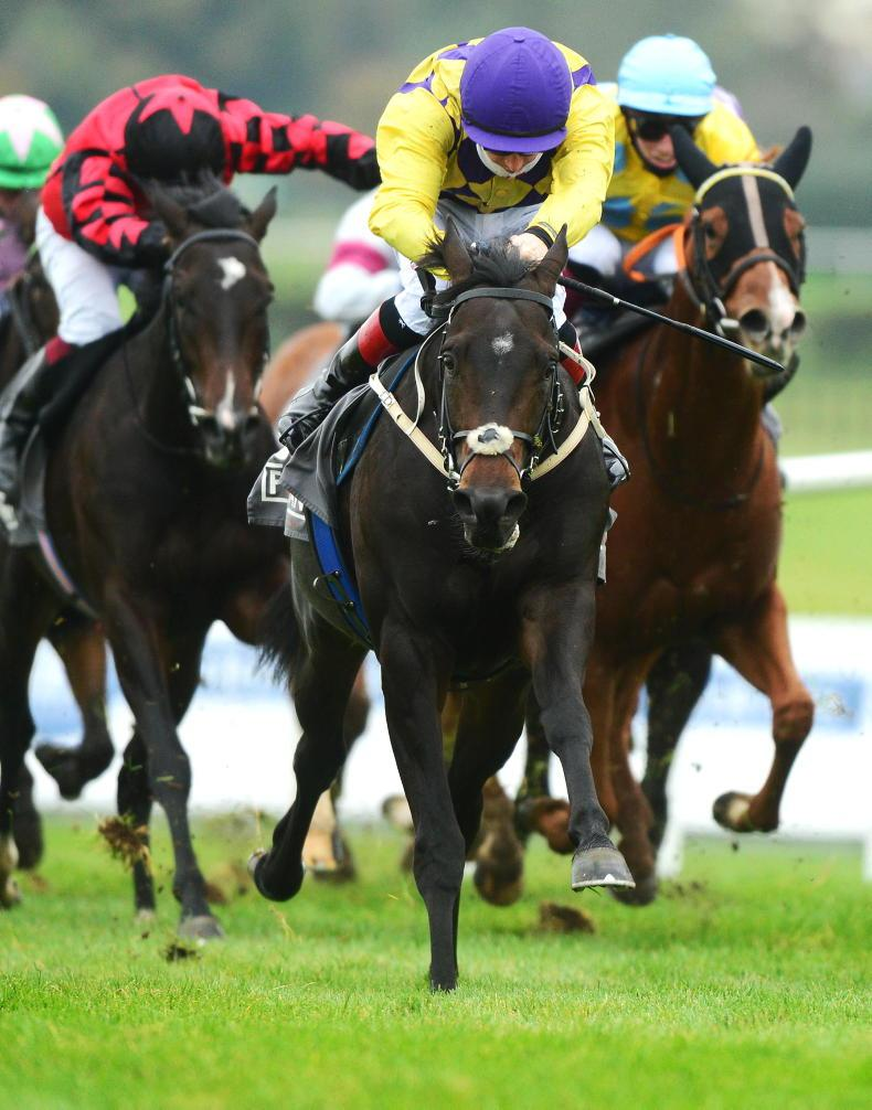 NAAS SUNDAY: Ecliptical eclipses rivals