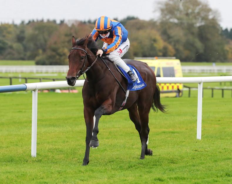FAIRYHOUSE TUESDAY: Cartouche all class as Keane keeps up momentum
