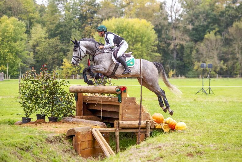 LE LION D'ANGERS: Silver for Cooley Rosalent (ISH) and Townend