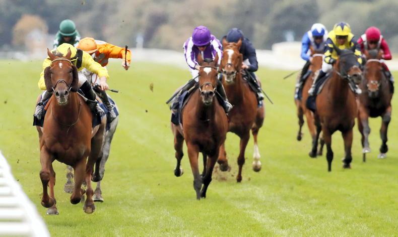 BRITAIN: Tough Addeybb just champion