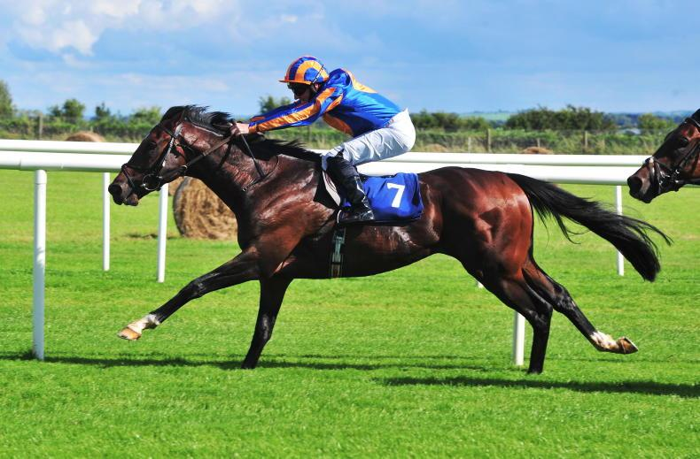 Wembley is O'Brien's sole Futurity contender