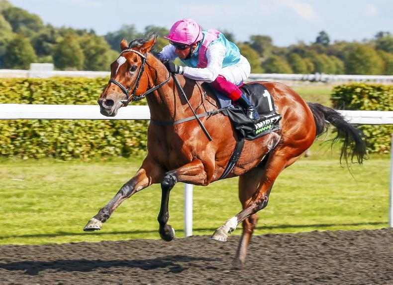 Gosden bids fond farewell to magnificent Enable