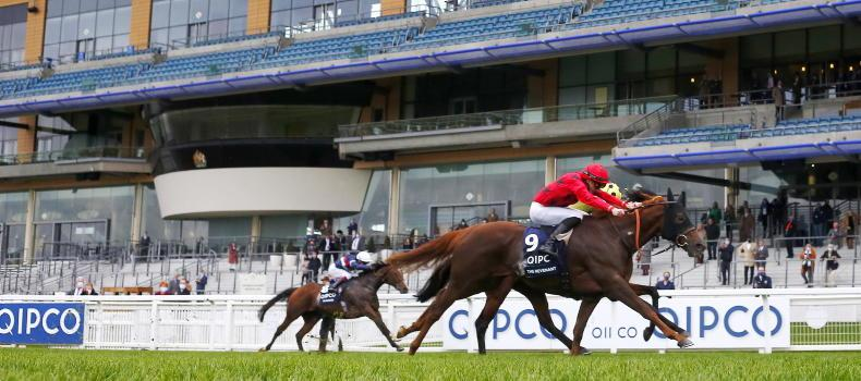 BREEDING INSIGHTS: 44 not out for super-sire Dubawi