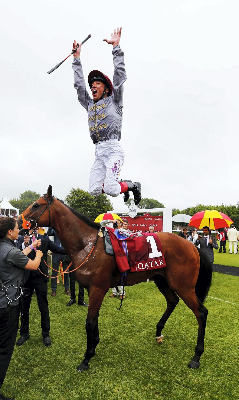 BREEDING INSIGHTS: Mehmas sets a new record for winners