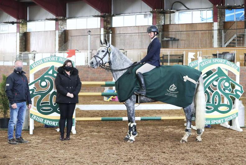 SHOW JUMPING: Sunday Girl does the business for Phelan