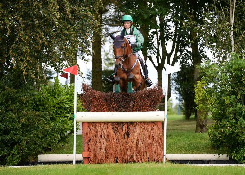 NEWS: Horseware Woodcourt Garrison 10th in WBFSH rankings